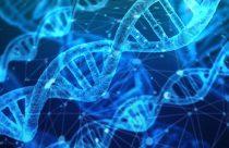 Una fuente de recursos didácticos en Biotecnología poco conocida