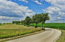 Al no permitir los cultivos genéticamente modificados, la Unión Europea estaría generando mayor emisión de CO2